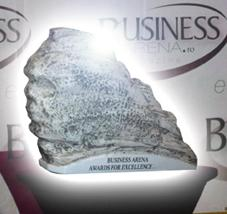 Business Arena Awards for Excellence 2018 1